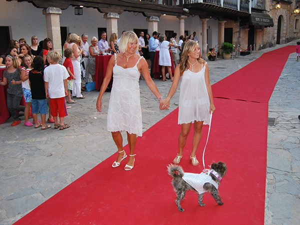 Dogs on the catwalk, Palma de Mallorca