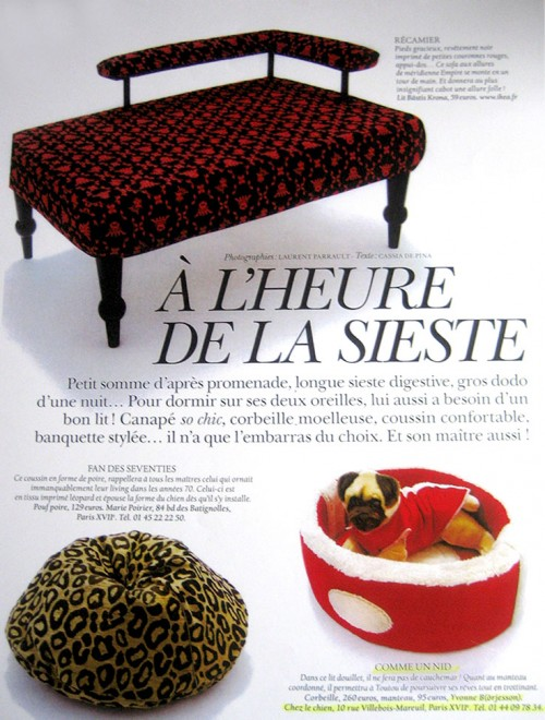 Yvonne Borjesson Chien Chic Press, Magazine