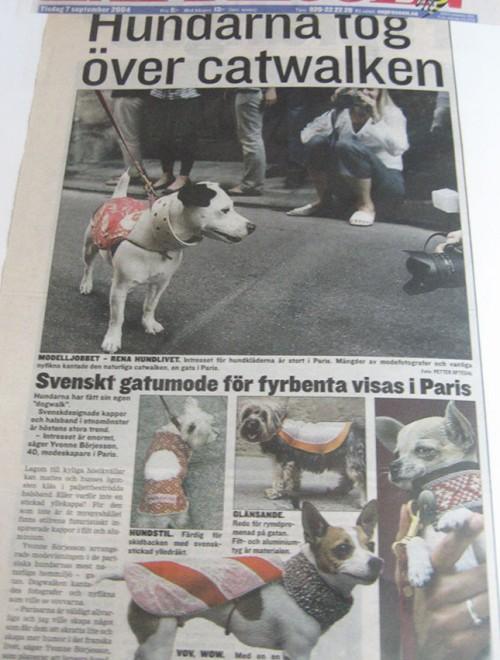Yvonne Borjesson Chien Chic Press, Expressen